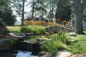 The Benefits of Professional Residential Landscaping | Fairfax VA