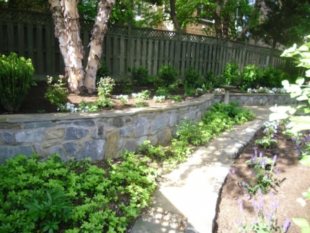 Landscaping Magic: Softenting Stone Garden Walls | Rockville, MD