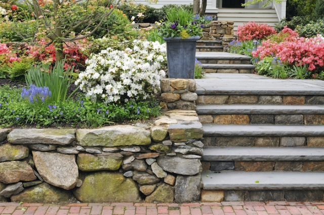 The Rules Every Homeowner Should Follow When Landscaping