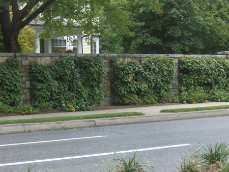 3 Interesting Ways to Dress up Your Block Retaining Wall
