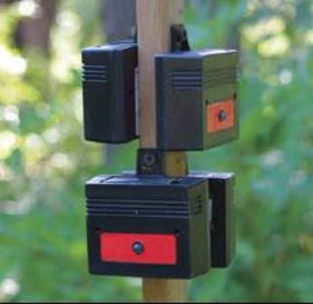 Save your Garden with this Affordable Deer Deterrent
