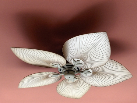 Ceiling Fans | When Form Meets Function