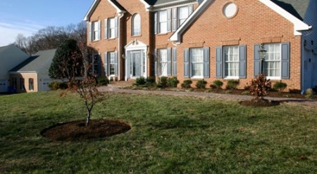 Be Careful Where You Dig for Landscape Maintenance | Silver Spring MD